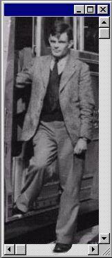 Alan Turing: the enigma   162 x 371 jpeg 15kB